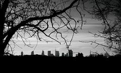 Milan skyline (Luca Enrico Sironi) Tags: blackandwhite panorama milan skyline landscape milano bianconero grattacieli