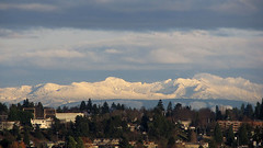Cascades from Seattle (Mike Dole) Tags: seattle cascades phinneyridge