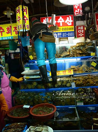 鷺梁津海-市場017.jpg