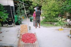 faafu/dhaalu (dying regime) Tags: life people film stone 35mm canon islands travels canonae1 maldives atolls faafu dhaalu raajje dyingregime munshidmohamed