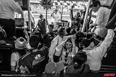 APR-Motorsport-Rolex-24-2013-202