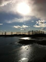 Pitt Polder (Alter Corvidae) Tags: sun canada nature water clouds scenery bc britishcolumbia wetlands february polder pittlake pittmeadows