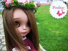 Pauline - Primadolly Ginger