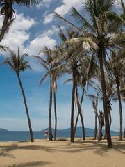 Cua Dai Beach Hoi An (Maren 86) Tags: beach palm trees sky ocean sea water beautiful travel vietnam asia lumixg7 microfourthirds