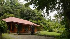 Nuestro bungalow por un da (Mayan_princess) Tags: chiapas argovia finca resort caf coffee kaffee paraso paradise vegetacin vegetation verde green ro river spa relajacin relax forest selva orgnico autosostenible