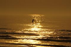 Belgian coast (Natali Antonovich) Tags: belgiancoast northsea sea seasideresort seashore seaside seaboard lifestyle relaxation water wenduine romanticism romantic reflection horizon parallels silhouette nature
