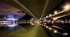 Ciudad artes y ciencias valencia (server.carlos) Tags: largaexposicin reflejos nocturnas valencia ciudaddelasartesylasciencias