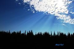 IMG_9707 (durkeyman05) Tags: beautiful sky woods landscape trees treeline maine