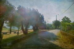 the right way (silviaON) Tags: way caminhoportugus portugal sun light textured kerstinfrankart