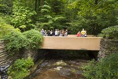 DUG_7319r (crobart) Tags: fallingwater frank lloyd wright kaufmann bear run nature reserve pennsylvania