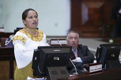 Esthela Acero - Sesin No. 409 del Pleno de la Asamblea Nacional / 20 de septiembre de 2016 (Asamblea Nacional del Ecuador) Tags: asambleanacional asambleaecuador sesinno409 sesin409 409 pleno sesindelpleno esthelaacero