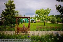 PLW_5563 (Laszlo Perger) Tags: wien vienna sterreich austria blumengarten hirschstetten flowergarden