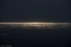 DSC_6415.jpg (Elvar H) Tags: arcticocean helmerhansen siarctic birds ice iceedge