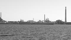 043crpshsatbwaconfwl (citatus) Tags: great lakes selfunloading cement carrier stephen b roman eastern end toronto harbour harbor canada essroc fall morning 2016 pentax k3 ii