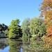 Water Gardens - Dorset