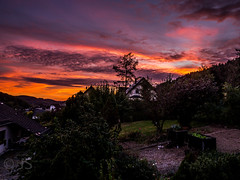 Great evening mood with perfect colours at the sky (jonasschmidt1909) Tags: sunset red orange sky evening mood olympus om10 sauerland