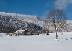 Ferme sous la neige (Tonton Dave) Tags: mountain snow montagne landscape switzerland suisse farm neige paysage ferme vaud montdor vallorbe