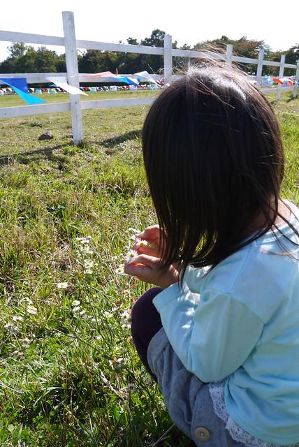 カンティフェアにて・花摘みの写真