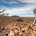 "Etendeka Tablelands in Namibia • <a style=""font-size:0.8em;"" href=""https://www.flickr.com/photos/21540187@N07/8292716594/"" target=""_blank"">View on Flickr</a>"