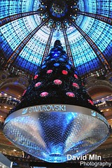 Paris, France - SWAROVSKI Chrismas Tree (GlobeTrotter 2000) Tags: christmas new xmas eve travel winter vacation paris france tree tourism happy navidad store europe lafayette crystal nye year visit diamond dome swarovski merry feliz luxury department haussman 2013 galarie