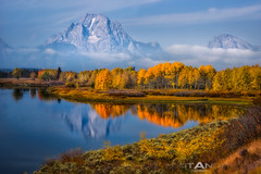 Ox Bow Bend #1 (Matt Anderson Photography) Tags: travel autumn trees orange usa color reflection tree rabbit fall tourism nature glass yellow rock horizontal clouds outdoors photography leaf code discount warm day mt seasons outdoor fallcolors scenic tranquility grand nopeople brush sage ox mount silence b