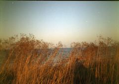 completely offline (sorina iordan) Tags: summer film analog seaside lomo lomography diana romania analogue vamaveche 2012 2mai analof dianamini