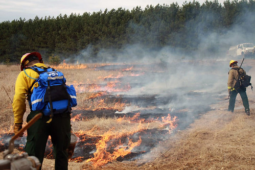 Prescribed Burning by U.S. Fish and Wildlife Service - Midwest Region, on Flickr