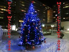 86155 Weihnachten ist vorbei.... (golli43) Tags: christmas xmas winter weihnacht 2012