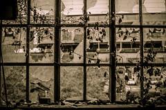 (Erik Janssen - street photography) Tags: street broken window glass rue fentre shards glas raam verre straat scherven cass clats kapot