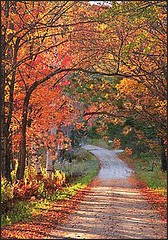 Vermont in the fall (Jo-85'F today. Whew, gonna be HOT!!!) Tags: vermont fallcolours beautifulphoto