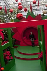 Christmas at the Montral Botanical Gardens C20130102 110 (fotoproze) Tags: christmas canada natal weihnachten navidad quebec montreal noel nol natale   nadal kerstmis jl vianoce nollaig karcsony nadolig boi joulu  jardinbotaniquedemontral boenarodzenie montrealbotanicalgardens vnoce  crciun 2013        boino