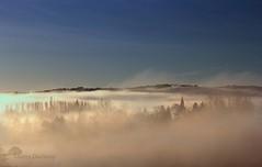 Une anne s'veille (photosenvrac) Tags: light sun mist tree tower fog landscape soleil town village lumiere paysage arbre brouillard brume clocher thierryduchamp