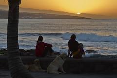 F007885_02 (fotoliber) Tags: sunset sea españa naturaleza nature water mar spain canarias tenerife puestadesol espagne captureone