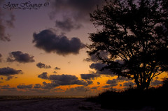 Sunset at Coquina Beach (Javier Huanay) Tags: sunset beach nature silhouette atardecer nikon florida outdoor nubes bradenton d7000 bestevercompetitiongroup