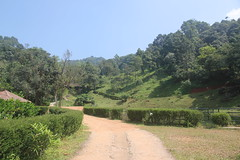 047 (balagopalmohan) Tags: rain country wyanad