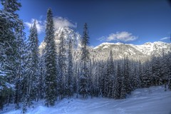 Under Skies of Blue (Andrew E. Larsen) Tags: winter white snow cold snowshoeing wintersky snoqualmiepass papalars andrewlarsen andrewlarsenphotography
