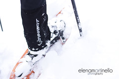 Dolomiti (Elena Martinello) Tags: ciaspole neve snow dolomiti bosco persona ragazzo man person winter inverno gettyimagesitalyq1 gettyimages gettyimagesitalyq2 gettyimagesitalyq3 foto photooftheday birra zaino salewa backpack dynafit path forest trees pine snowshoes