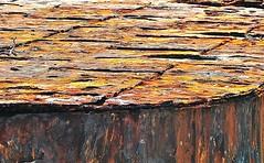 'Industrial wonder of its day' (*) (9/11) (Darkroom Daze) Tags: greatbritain england abandoned industry neglect rust iron industrial pattern decay 19thcentury shipwreck northshore maritime castiron disused bermuda wreck naval derelict abandonment corrosion pontoons spanishpoint floatingdock royalnavy northwoolwich ironplate floatingdrydock pembrokeparish stovelbay hmfloatingdockbermuda