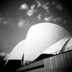 Sydney Opera House (Kerrie McSnap) Tags: sydney sydneyoperahouse operahouse holga lomo lomography toycamera mediumformat grainy 120 film kodaktmax square bw blackandwhite blackwhite architecture building