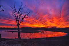 Streaming Color (Kansas Poetry (Patrick)) Tags: sunset kansas lawrencekansas clintonlake patrickemerson