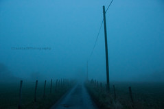 Untitled (ClaudiaJR) Tags: road mist kent telephone country lane poles