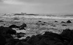 Firth of Forth from Barns Ness, 2012 (Richard Xe) Tags: firthofforth roughsea rockycoastline barnsness shipatsea