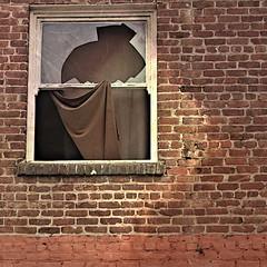 making do (msdonnalee) Tags: window janela ventana fenster fentre finestra brokenwindow brokenglass curtain brick makeshiftcurtain makeshiftwindowcovering jaggedglass shadowfx square squareformat improvisedcurtainholdback cortina vorhang tenda rideau