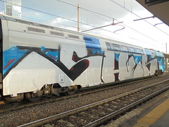 genova most hated (en-ri) Tags: sher azzurro bianco train torino graffiti writing endtoend wholecar toptobottom