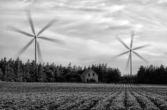 Wind turbines and abandoned farmhouse, PEI. (Timothy Neesam (GumshoePhotos)) Tags: windmill windturbine rurex abandoned farmhouse pei princeedwardisland bw blackandwhite fuji fujifilm xt1 multipleexposure