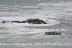 Rocks! (doublejeopardy) Tags: rock gale thelizard mist surf sea whitewater cornwall places waves lizard england unitedkingdom gb