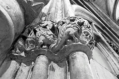 York Minster (DncnH) Tags: yorkminster york cathedral minster medieval architecture corbel gargoyle blackwhite chapterhouse