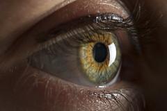 Eye Macro (budrowilson) Tags: strobist eye macro pupil iris canon 5dmarkiii ef100mmf28macrousm