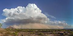 August 21 Dust Storm (mvcornelius) Tags: phoenix haboob