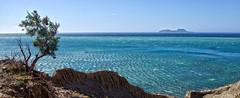 agia galini 1a (Bilderschreiber) Tags: agia galini crete kreta greece griechenland hellas paximadia coast kste meer sea water sonne sun summer sommer tree baum one